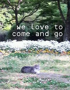 We love to come and go♪
