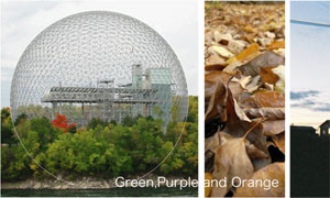 Green,Purple and Orange