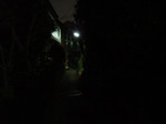 夜の路地には不思議な親近感がある。つ