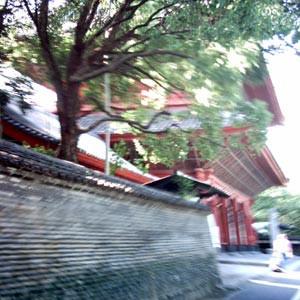 芝増上寺・大門