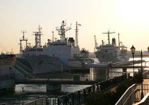 Fuetaro2005-12-30