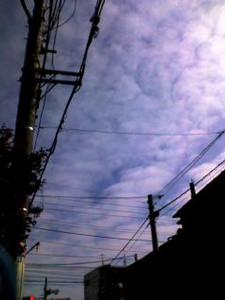 Fuetaro2006-03-17