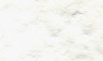 パルパー ホワイト