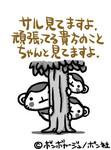 KING8162005-01-08