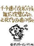 KING8162005-05-17