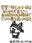 KING8162005-05-22