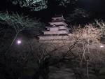 夜の会津若松(鶴ヶ城)