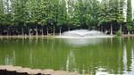 別所沼公園の風景(イメージ)