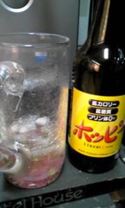 Mad-Tanuki2009-01-25