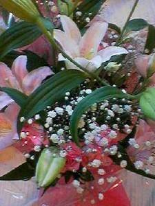NATSUCO2007-07-02