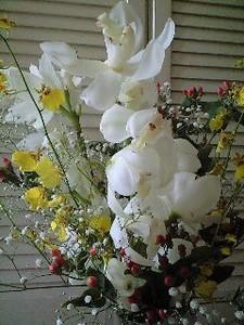NATSUCO2009-07-28