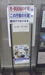 NCOM2011-03-07