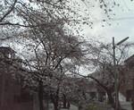 RYOJI2010-04-01