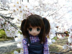 春の公園へ!