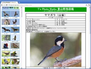 里山野鳥図鑑