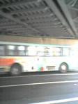 actypio2005-06-03
