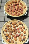 alisato2004-07-23