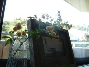 asacafe2006-05-04