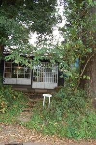 asacafe2008-11-06