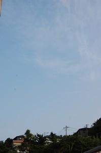 asacafe2009-07-04