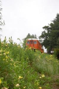 asacafe2009-07-21