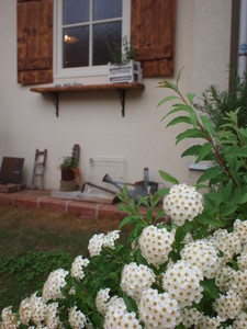 asacafe2011-05-13