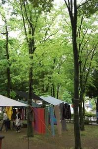 asacafe2011-05-27