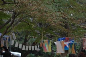 asacafe2011-11-05