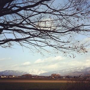asacafe2012-01-15