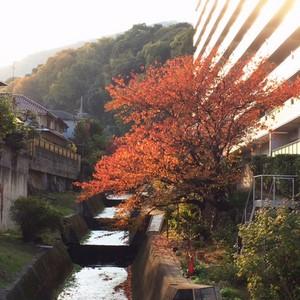 asacafe2014-11-22