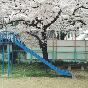 asacafe2015-04-03