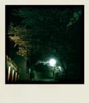 avocadobanana2009-04-09