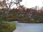 秋の檜町公園