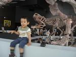 六本木ヒルズ 恐竜展