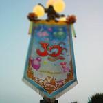 Tkyo Disneyland 30th