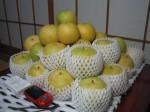 「ありのみ農園」の二十世紀梨10kg