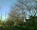 bousisensei2008-01-07