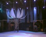 bousisensei2008-01-25