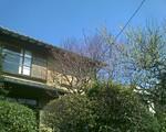 bousisensei2008-03-15