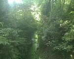 bousisensei2009-05-02