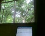 bousisensei2009-07-20