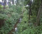 bousisensei2009-07-22
