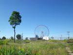久しぶりにいい天気〜