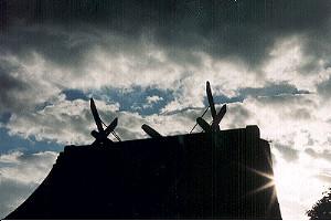 bragelone2005-02-08