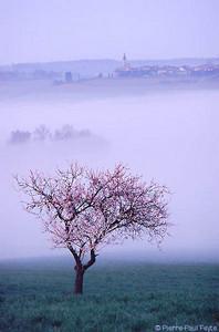 bragelone2005-03-03
