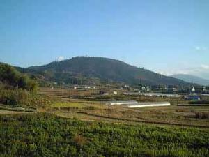 bragelone2005-06-26