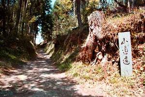 bragelone2005-07-05