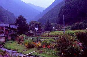 bragelone2005-08-04