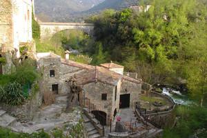 bragelone2006-11-24