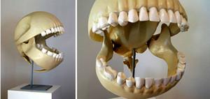 パックマンの骨.jpg